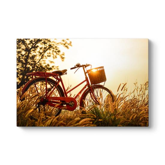Gün Batımında Bisiklet Kanvas Tablo