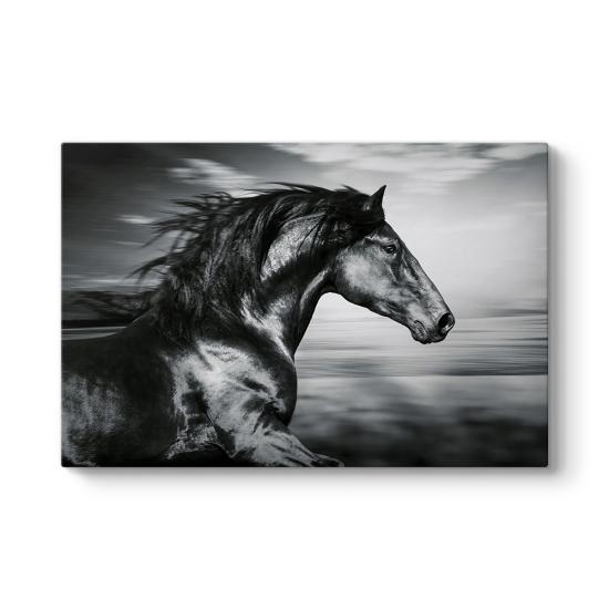 İspanyol Koşu Atı Kanvas Tablo