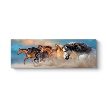 Kumda At Sürüsü Kanvas Tablo