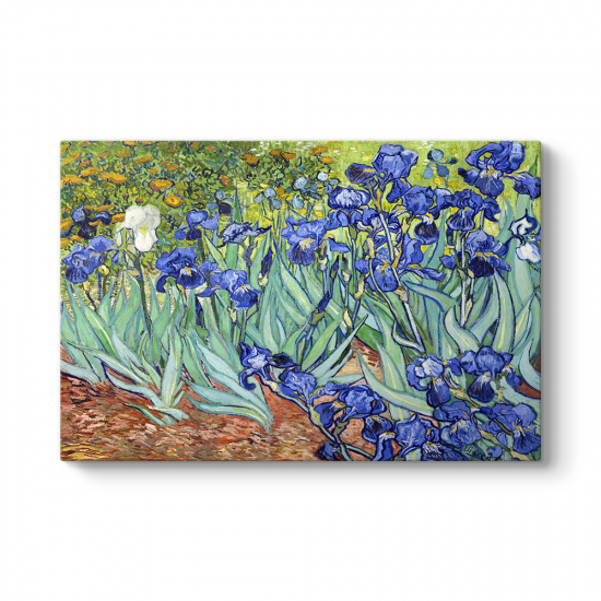 Vincent Van Gogh - İris Süsen Çiçeği Kanvas Tablosu