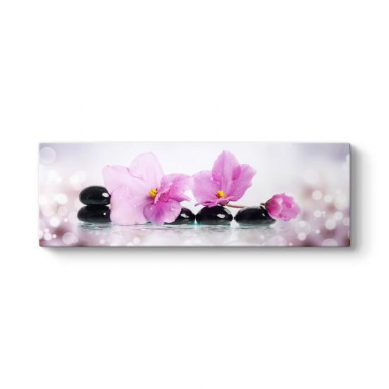Pembe Orkide ve Işıltılar Panorama Tablo