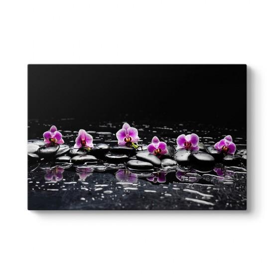 Siyah Taşlar Ve Orkideler Tablosu
