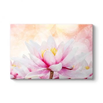 Işıltılı Nilüfer Çiçeği Tablosu
