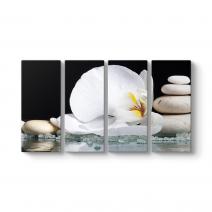 Beyaz Orkide ve Taşlar Tablosu