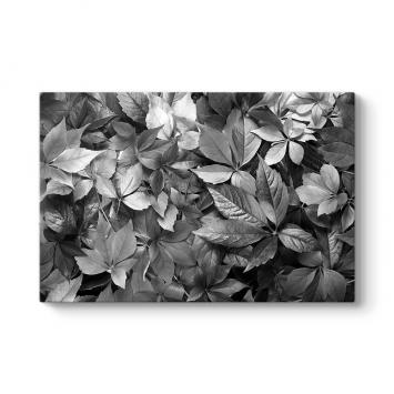 Kurumuş Sonbahar Yaprakları Tablosu