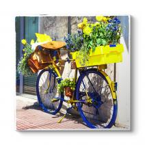 Sarı Lacivert Bisiklet Tablosu