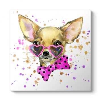 Chihuahua Tablosu