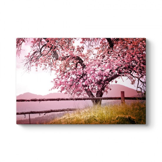 Pembe Yapraklı Ağaç Tablosu