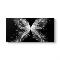 Işıltılı Kelebek Tablosu