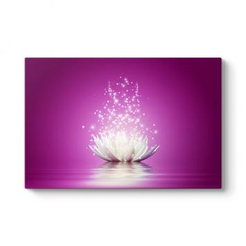 Işıltılı Mor Nilüfer Çiçeği Tablosu
