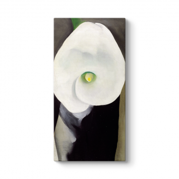 Georgia OKeeffe - Calla Lily for Alfred Tablosu