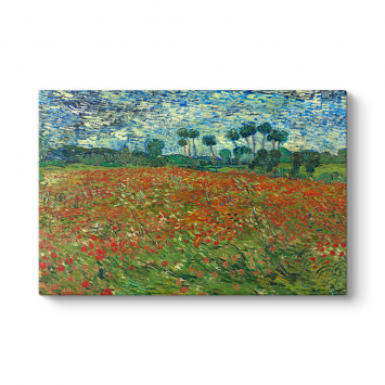 Vincent Van Gogh - Poppy Field Tablosu