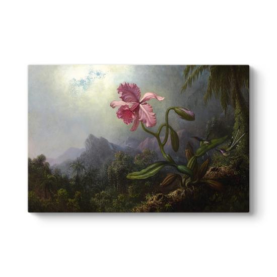 Martin Johnson Heade - Sinek Kuşları ve Orkide Tablosu