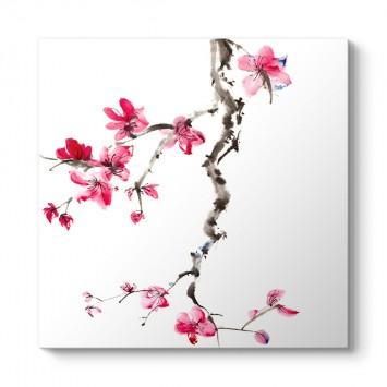 Çin Çiçeği Soft Tablosu