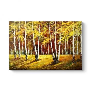Orman ve Ağaçlar Tablosu