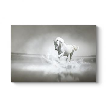 Suda Yürüyen Beyaz At Tablosu