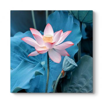 Mavi Yapraklı Nilüfer Tablosu