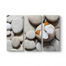Çakıl Taşları ve Kelebek Tablosu