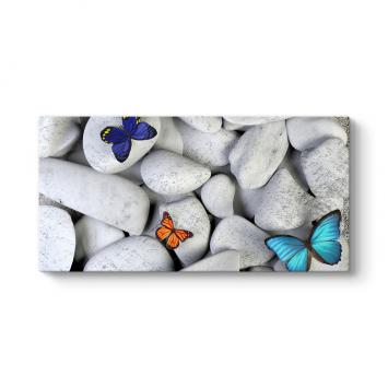 Taşlar ve Renkli Kelebekler Tablosu