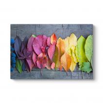 Renkli Yapraklar Tablosu