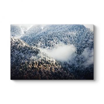 Sisli Dağlık Orman Tablosu