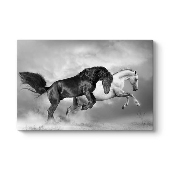 Siyah ve Beyaz At Tablosu