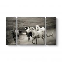 Sürü Atlar Tablosu