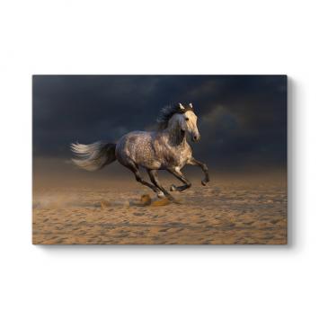Kırçıllı At Tablosu