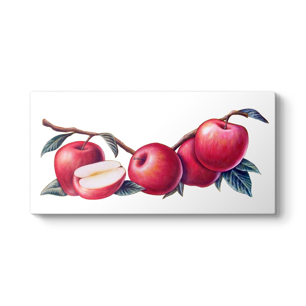 Elma Tabloları Yağlıboya Elma Resimli Tablolar