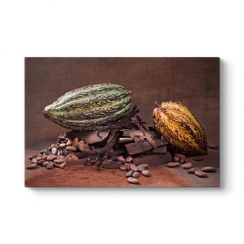 Kakao Çekirdeği Tablosu